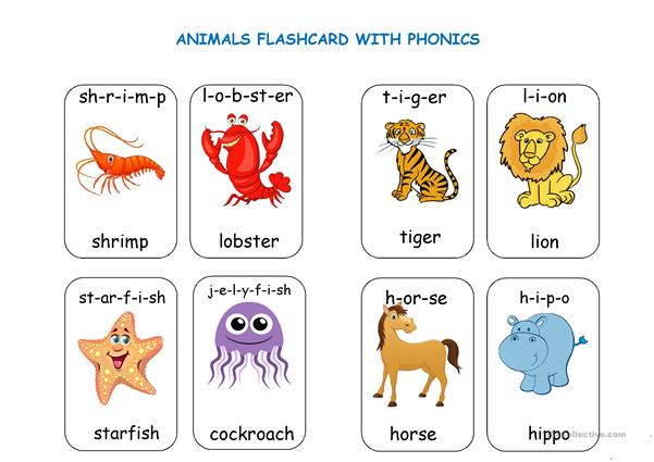 Animal Flashcards with Phonics