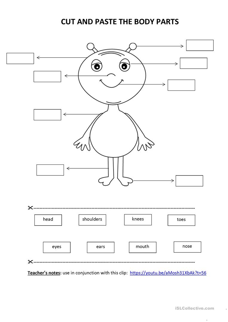 Cut & paste activity: Body Parts - English ESL Worksheets