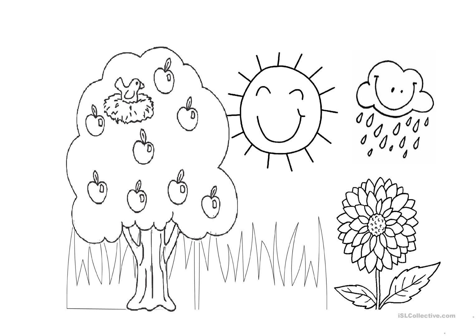 colouring activity for my backyard worksheet free esl printablecolouring activity for my backyard