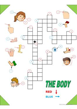 English Esl Body Parts Crossword Worksheets Most Downloaded 10 Results