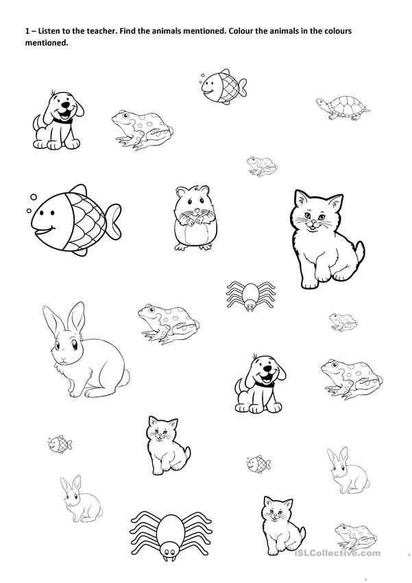 Find, Colour And Count PETS - English ESL Worksheets For Distance Learning  And Physical Classrooms