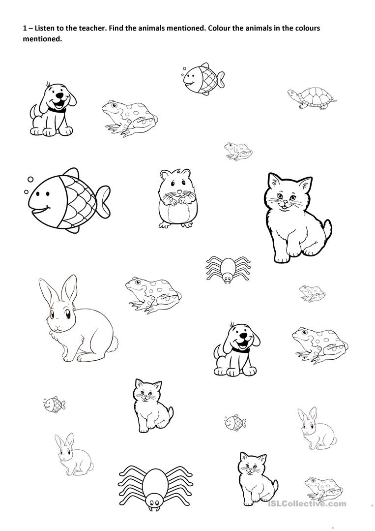 Find Colour And Count Pets English Esl Worksheets For Distance Learning And Physical Classrooms