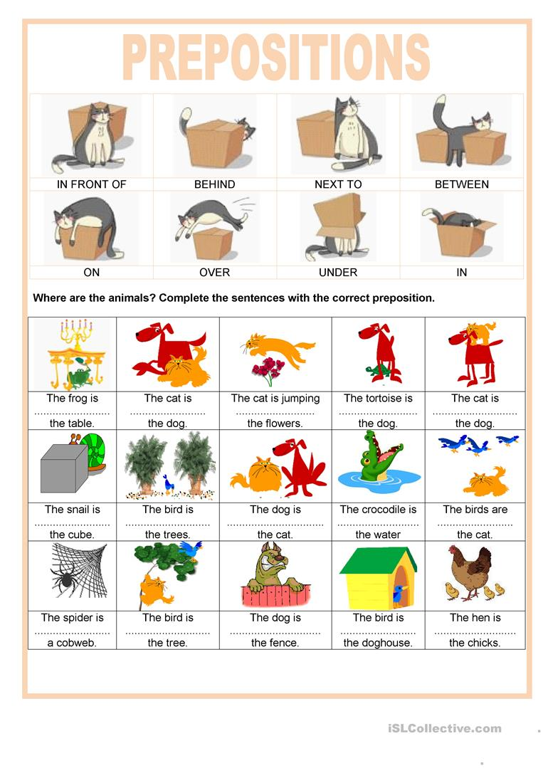 Preposition In Learn In Marathi All Complate: Where Are The Animals Worksheet