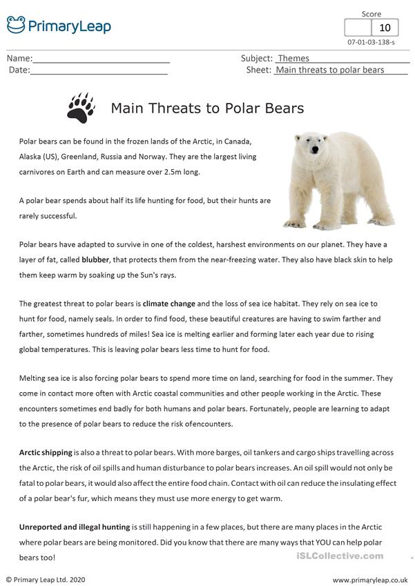 National Polar Bear Day - What Are The Main Threats To Polar Bears?