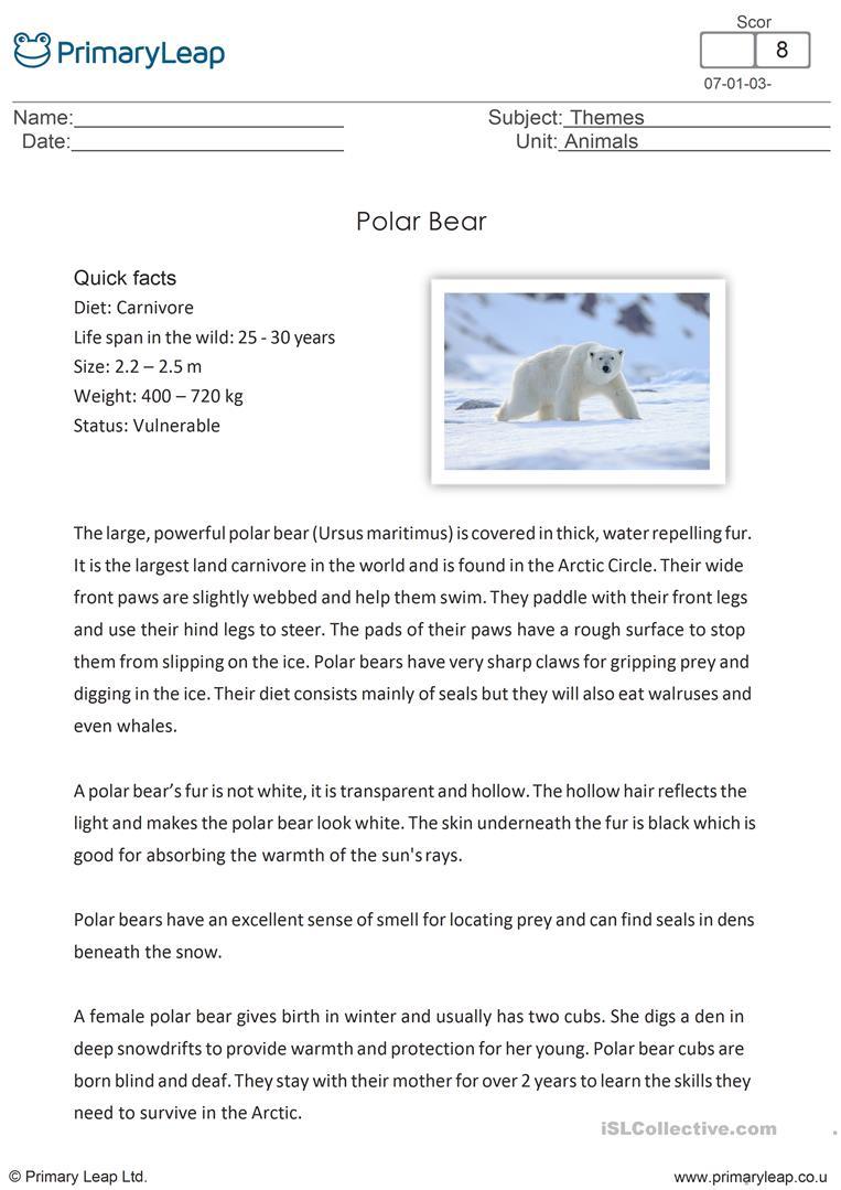 - National Polar Bear Day - Reading Comprehension - English ESL