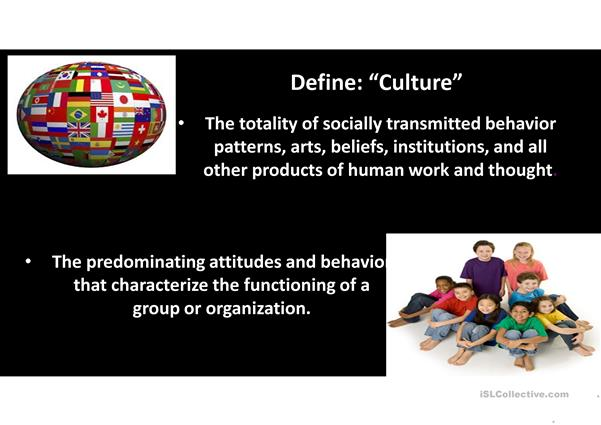Talking about cross-cultural diferences; second conditional